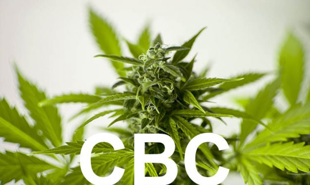 Cannabichromeen – CBC