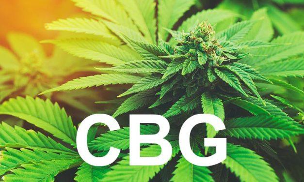 Cannabigerol – CBG