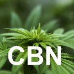 Cannabinol – CBN